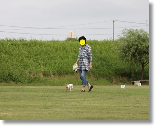 3_130726.jpg