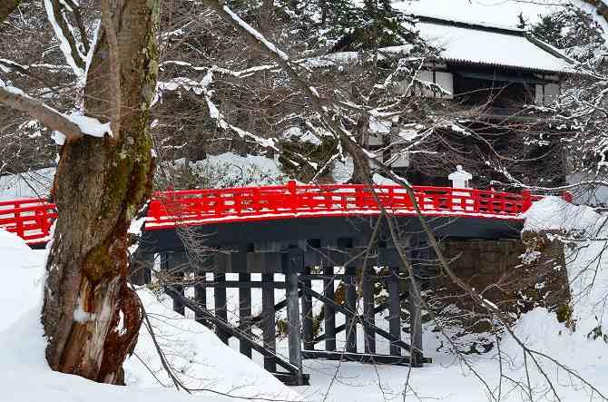 2014雪灯籠まつり (18)