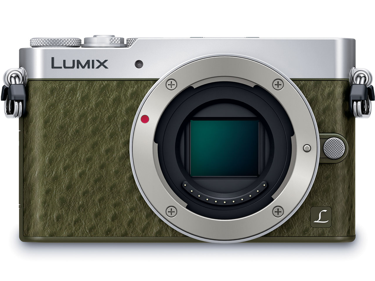 panasonic LUMIX DMC-GM5-G