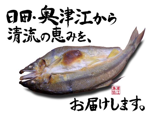 奥津江-天然アユの一夜干し