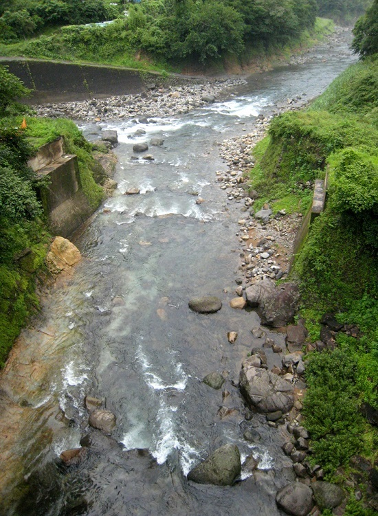 2013-7-2-津江川・川原川合流点