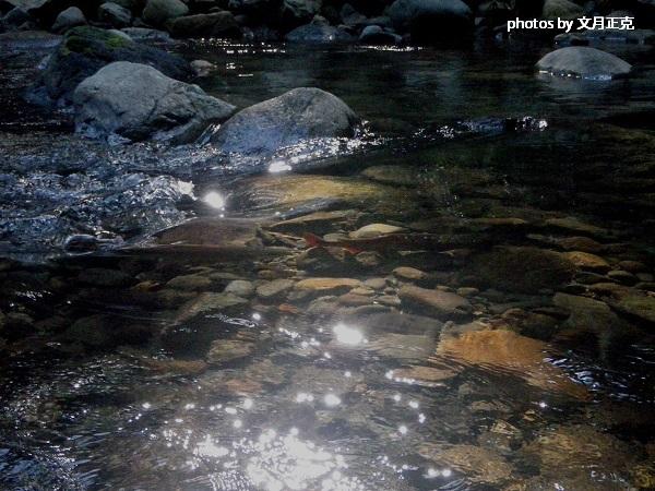 2013/梅野川CR区間/ペアリング風景-01