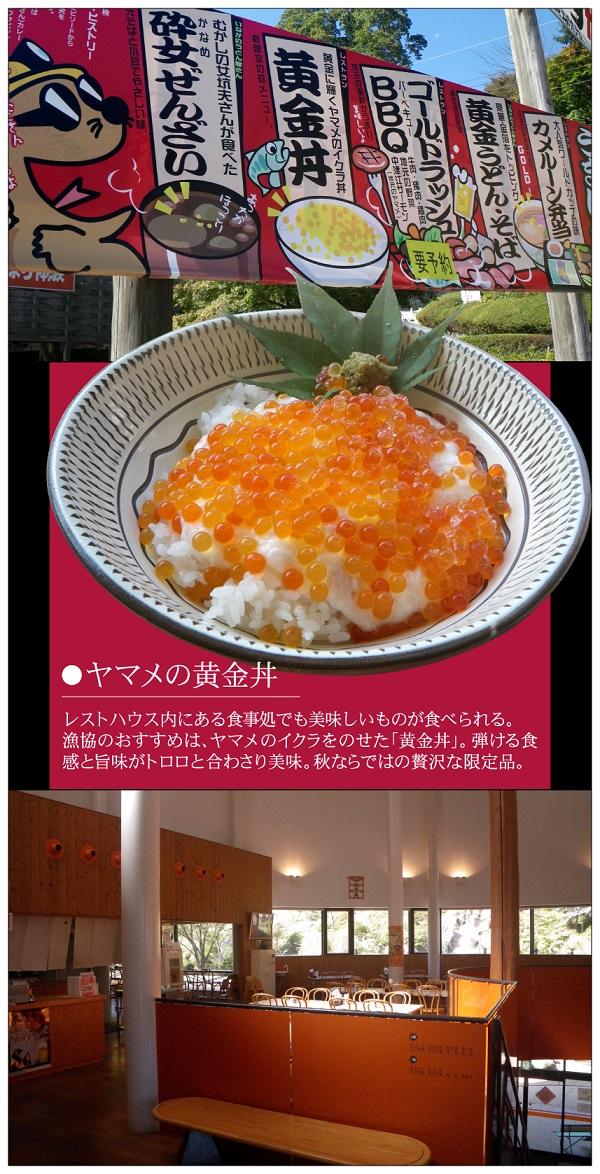 黄金フェスティバル/津江漁協/イクラ丼/黄金丼