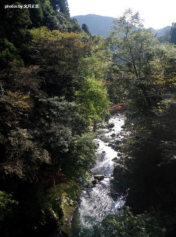 津江川-秋-風景-01a