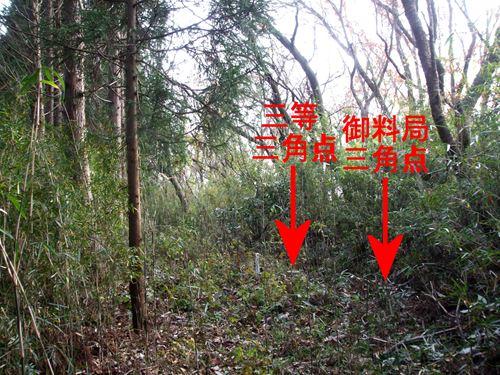 koyaba6.jpg