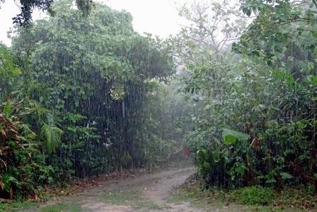 土砂降りのアプローチ