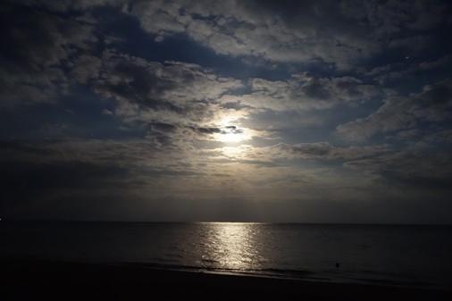 DSC03751 -月の光