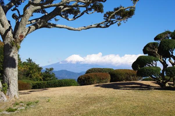 26.12.6日本平ホテル富士山 058_ks