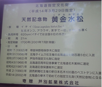 FJ311675.jpg