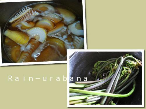 竹の子&わらびの煮物作ろう♪
