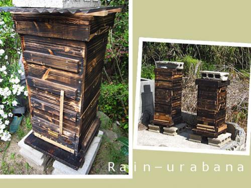 ミツバチの巣箱♪