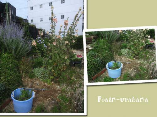 植える前に大掃除!