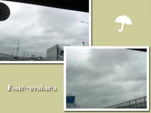 雨だがね...