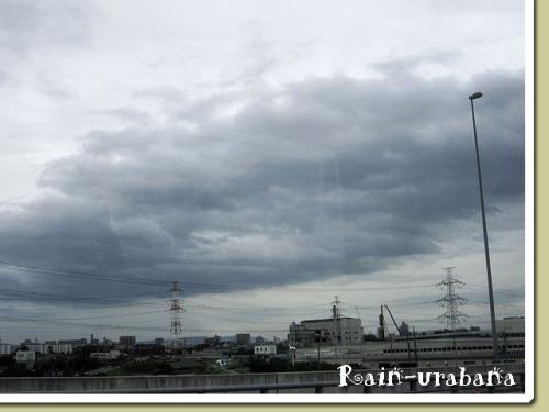 ドンヨォ~リの雲が広がってました