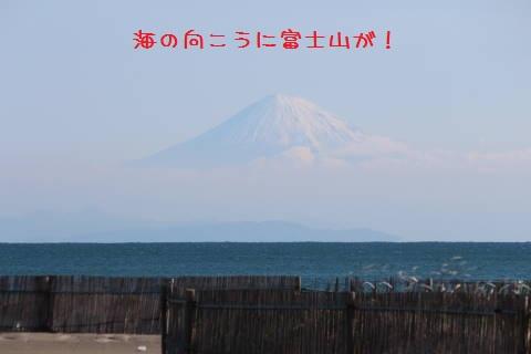 IMG_23230001.jpg