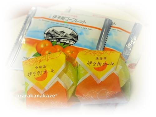 愛媛県のお土産 伊予柑ゴーフレットと伊予柑ケーキ