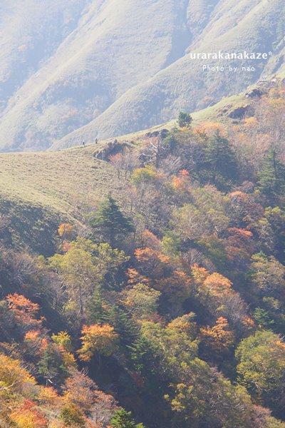 ジロウギュウへの稜線