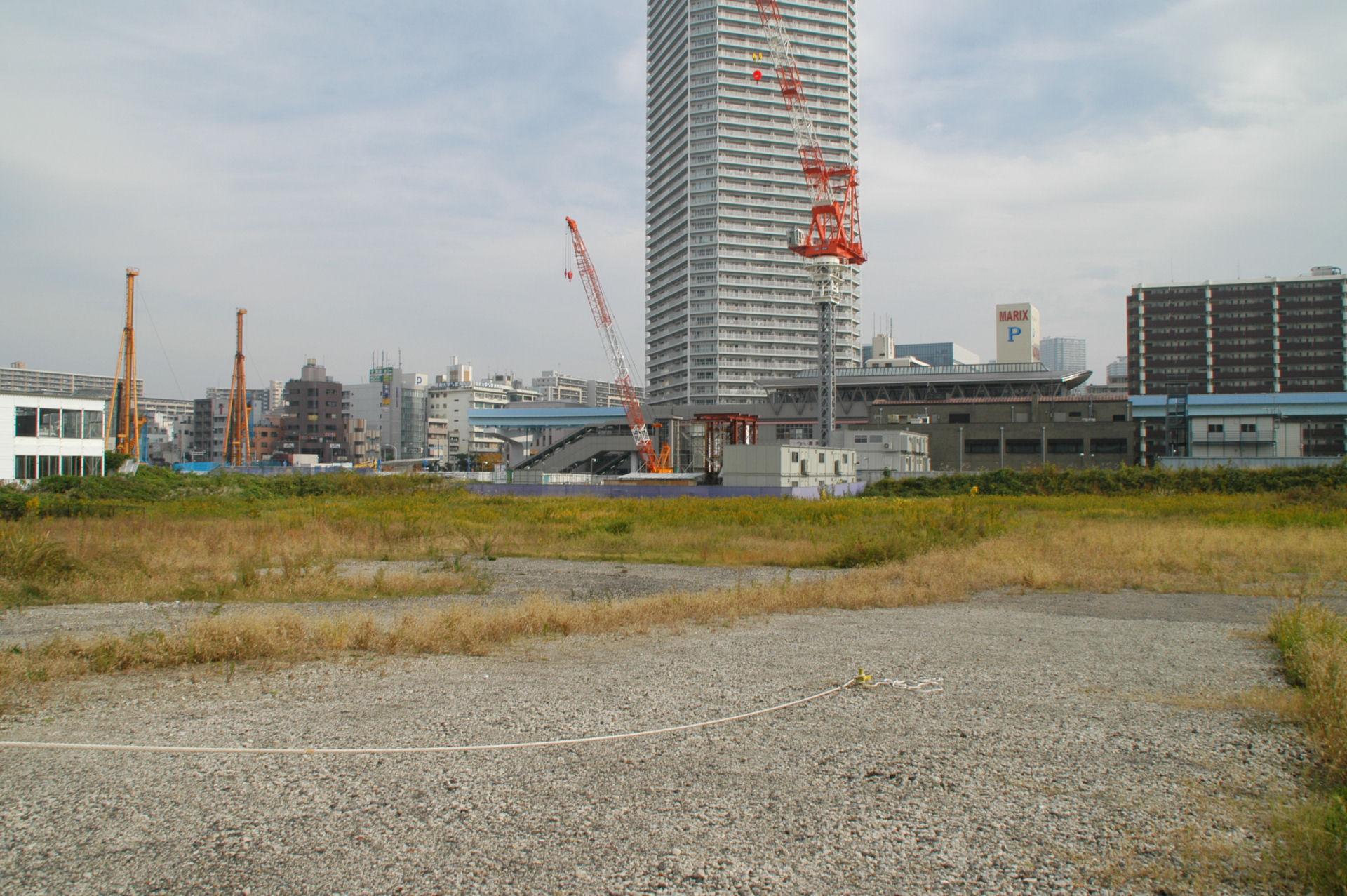toyosu13110112.jpg