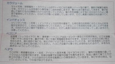 CIMG2983.jpg