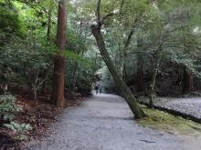 15:56 風宮参拝のあと、下御井神社に行きたかったのですが、この奥だったので諦め、せんぐう館にダッシュしました。