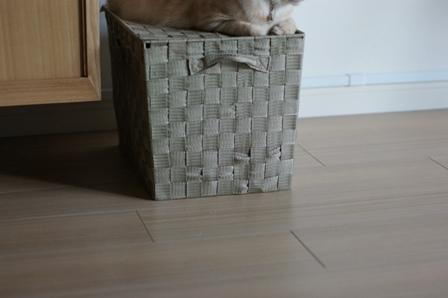 蓋つきのボックス