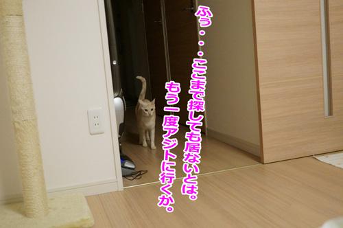 デカ☆あーちゃんの決意