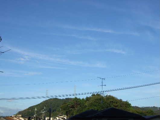 2013_10_6_1.jpg