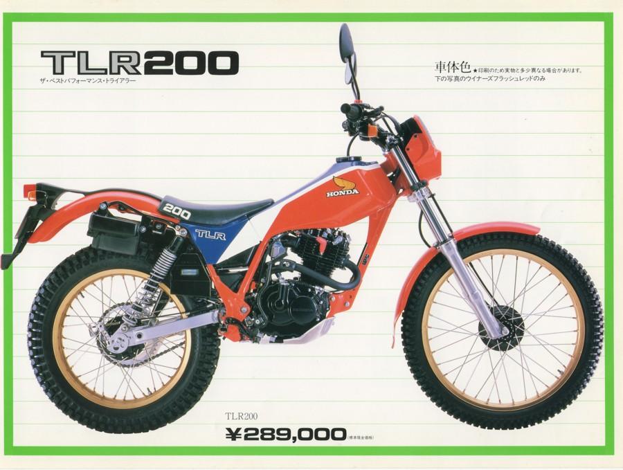 tlr200831.jpg