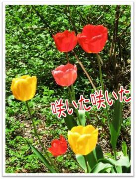 20130524-03.jpg
