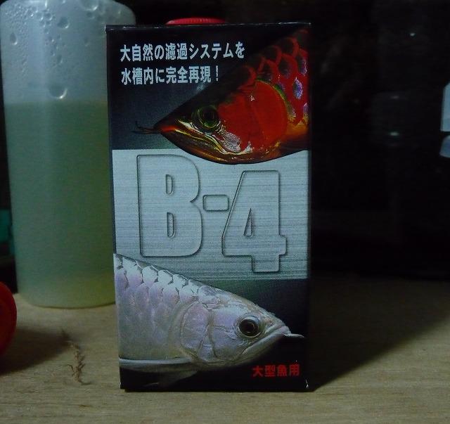 B-4.jpg