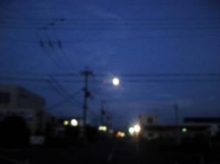 NCM_1492.jpg