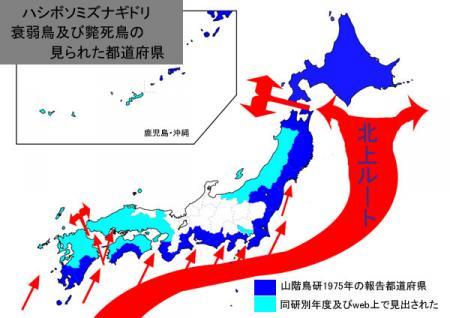 mizunagi-distribution
