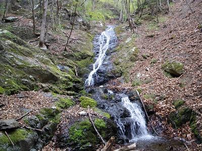 水流の右を木も使いながら