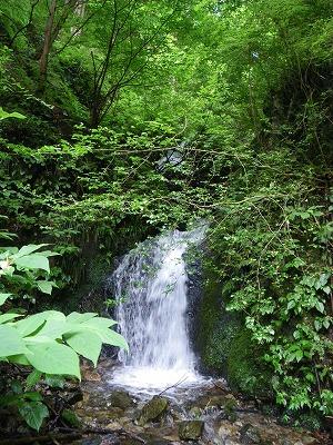 支流の滝場