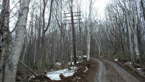 軍事道路1