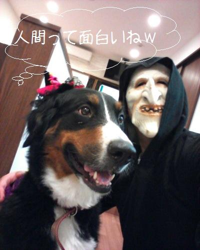 ハロウィン仮装②