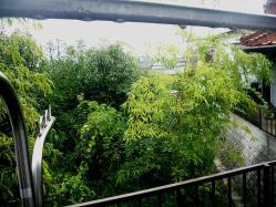 雨雨雨~20130824