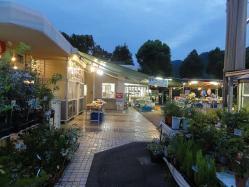 広島市植物園コンサート20130831-1