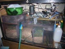 観賞魚の水槽可動停止20130902-2