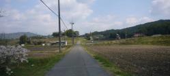 散歩20130426-5