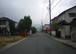 散歩20130530-2