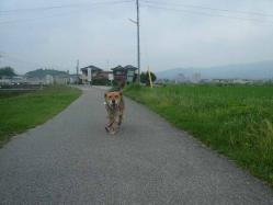 散歩20130625-3