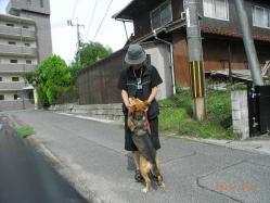散歩20130627ー3