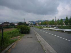 散歩20130823-3