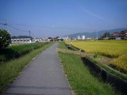 散歩20130924-5