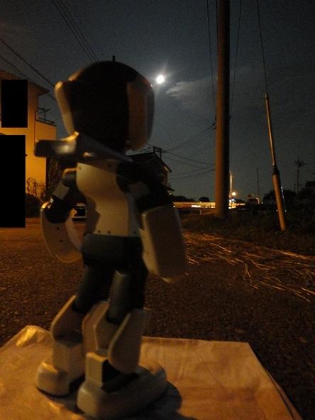 ロビ君、お月見02,