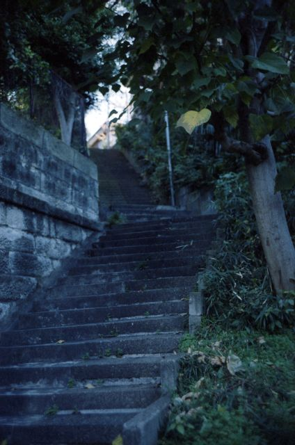 LeicaM3-02e