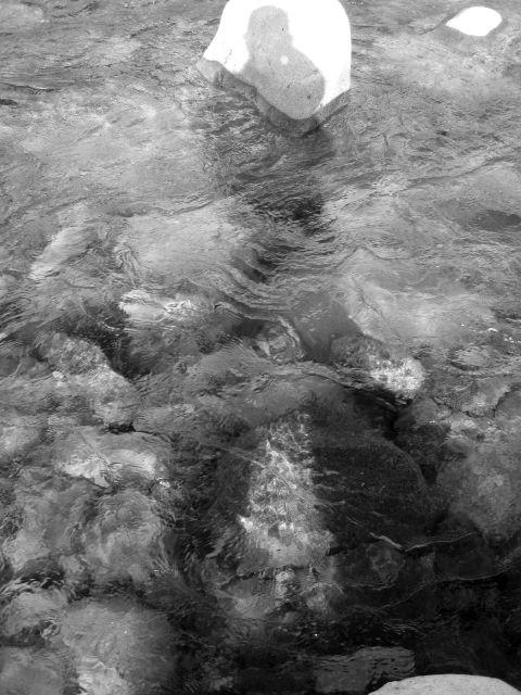 深山幽谷46a