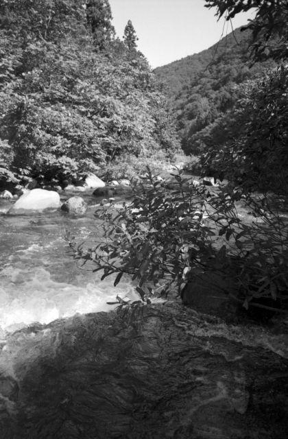深山幽谷43c