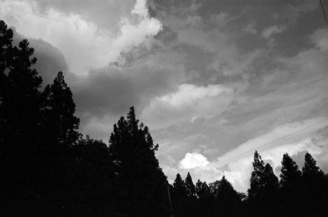 深山幽谷45d